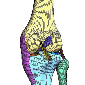 FEA and CFD based Simulation and Design for Medical and Biomedical Applications